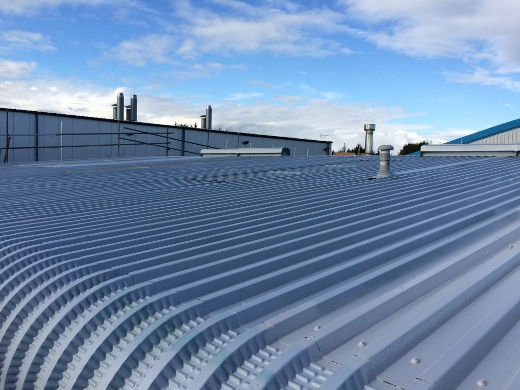 Industrial Roof Spray Painting